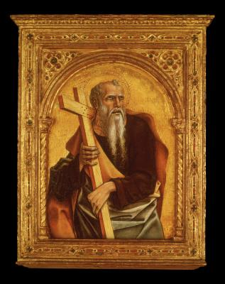 Image for An Apostle