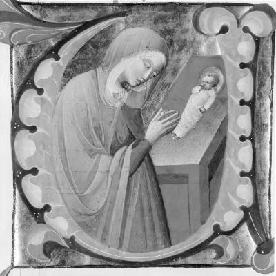 Image for The Virgin Adoring the Child