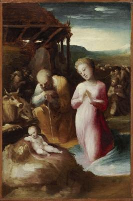 Image for Adoration of the Shepherds